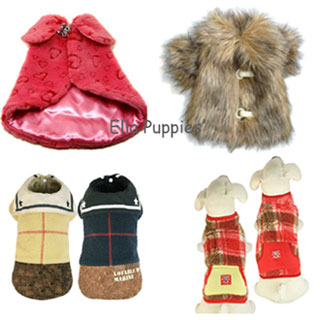 PET WINTER CLOTHES