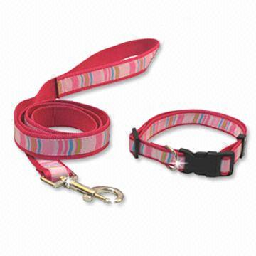 Pet Lead & Collars