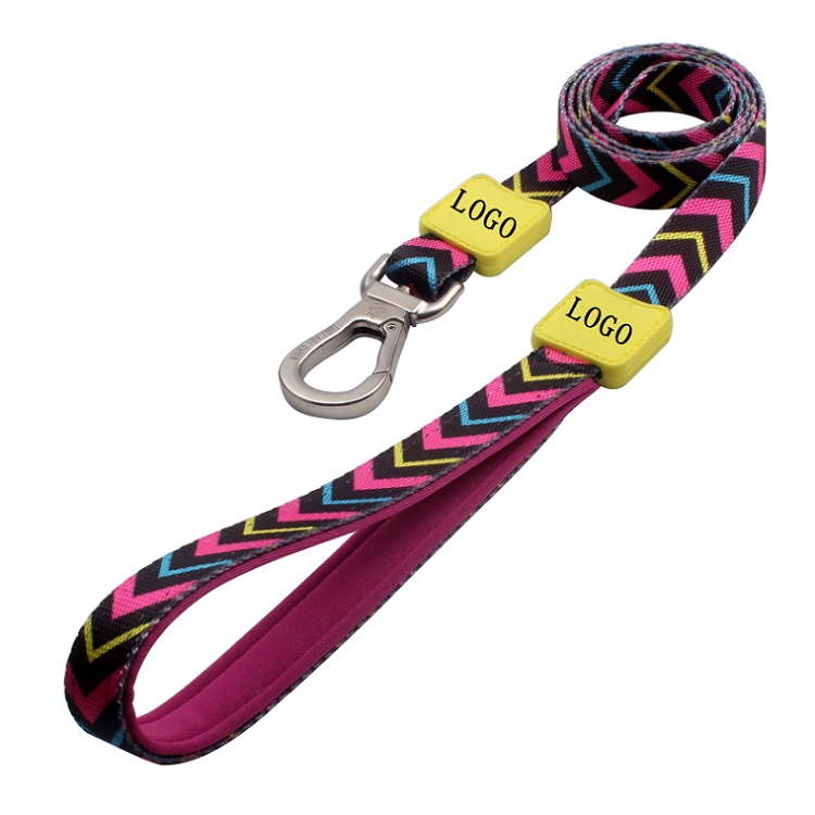 Amazon Hot Sale Newest Shiny Polyester Custom Rubber LOGO Fashionable Dog Leash