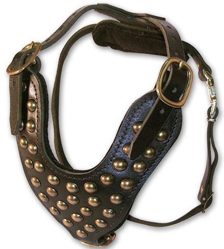 Handmade Leather Dog Collars,Harness,Muzzle,Leashes etc....